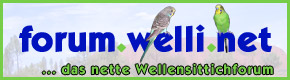 welli.net-Forum